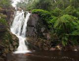 Steavenson Falls