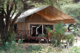 One of the tents at Elephant Bedroom