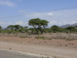 Passing through on the way to Isiolo