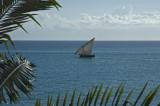 A Dhow seen from our balcony