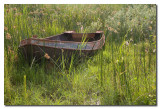 Barca oxidada  -  Rusty boat