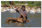 Pescador en el lago Abaya  -  Fisherman in lake Abaya