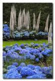 Hortensias y flores exoticas en Longwood Gardens Pennsylvania