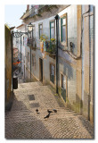 Calle tipica de Alfama  -  Picturesque street in Alfama