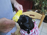 Ms. Bailey sure does like corn-on-the-cob!