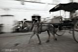 Ilocos : Isang Pangarap