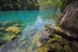 Kayangan Lake Coron Palawan Philippines.jpg