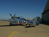 P51 Restored for $2,000,000