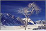 Wintertrek from Ladakh to Zanskar