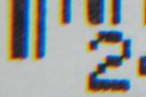 Hoya +10 crop border.jpg