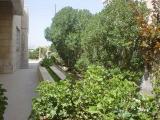 My House Mar. 2006 007.jpg