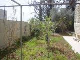 My House Mar. 2006 010.jpg
