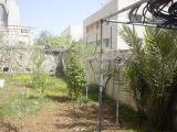 My House Mar. 2006 011.jpg