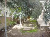 My House Mar. 2006 012.jpg