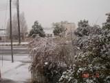 Snow in Amman 30.01.2008 002.jpg