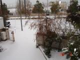 Snow in Amman 30.01.2008 007.jpg