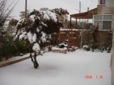 Snow in Amman 30.01.2008 013.jpg
