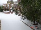 Snow in Amman 30.01.2008 019.jpg