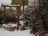 Snow in Amman 30.01.2008 020.jpg
