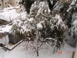 Snow in Amman 30.01.2008 069.jpg