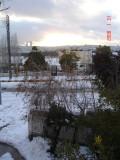 Snow in Amman 1 007.jpg