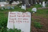 Presidio Pet Cemetery