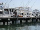 Port Royal Harbour