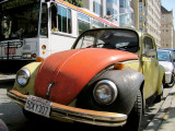 Nob Hill Bug