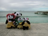 The Pandafords visit Grand Turk Island