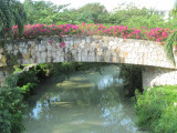 Grand Mayan Riviera Maya Bridge