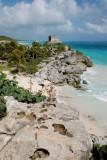 Iguana overlooking Tulum Ruins and Beach