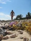 Riviera Maya Beach