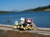The Pandafords Visting Hyatt Lake, Oregon