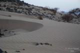 Sand patterns - 008.JPG