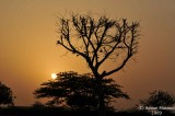 Khobar_001.jpg