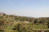 Hada_305.jpg