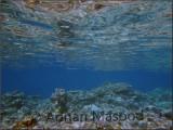 Red_Sea_024.jpg