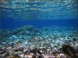 Red_Sea_016.jpg