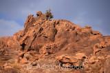 Jabal_Lawz_14.jpg