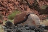 Rocks_01.JPG