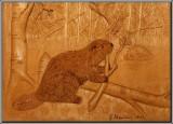 Castor ( Beaver )