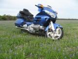 BlueInBlue 031a.JPG