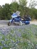 BlueInBlue 038a.JPG