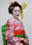 Geisha Photo Gallery