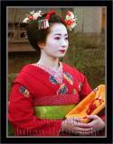Geisha image 051