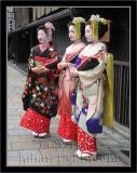 Geisha image 023