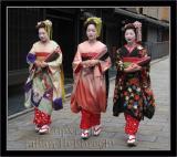 Geisha image 024