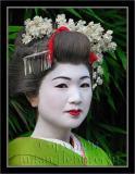 Geisha image 044