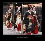 Geisha image 058