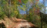 Trail along Laurel Lake